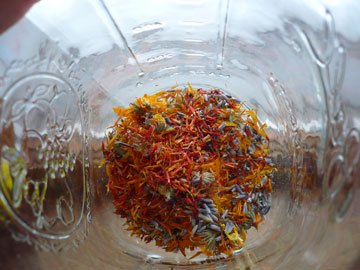 Calendula, safflower and lavender tea