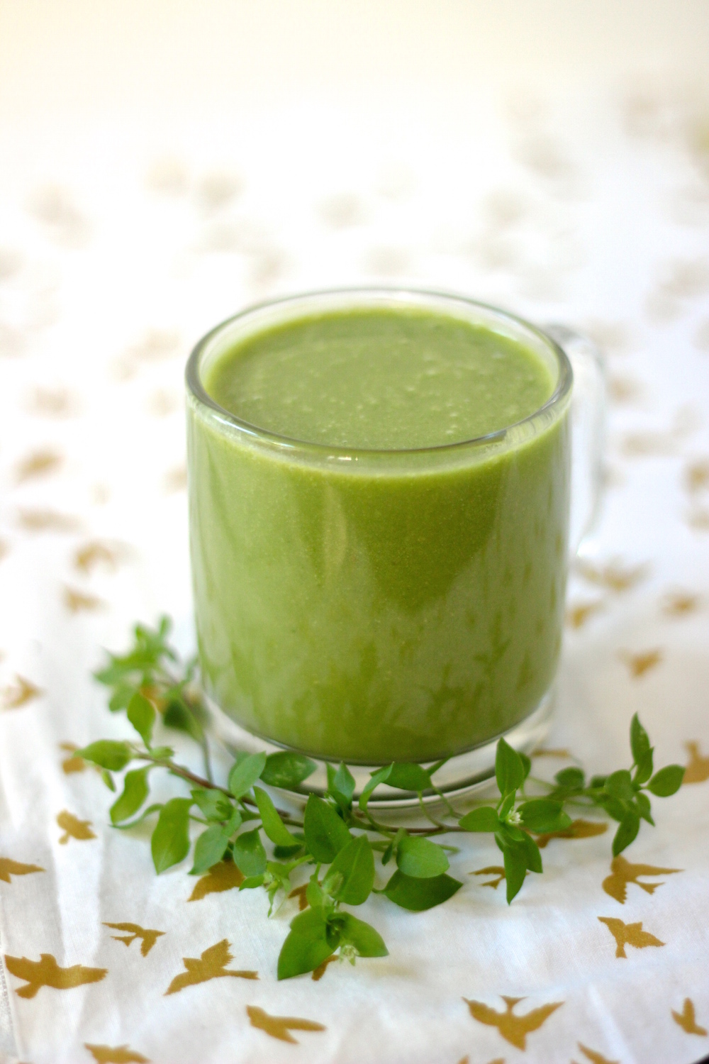 chickweed smoothie 3