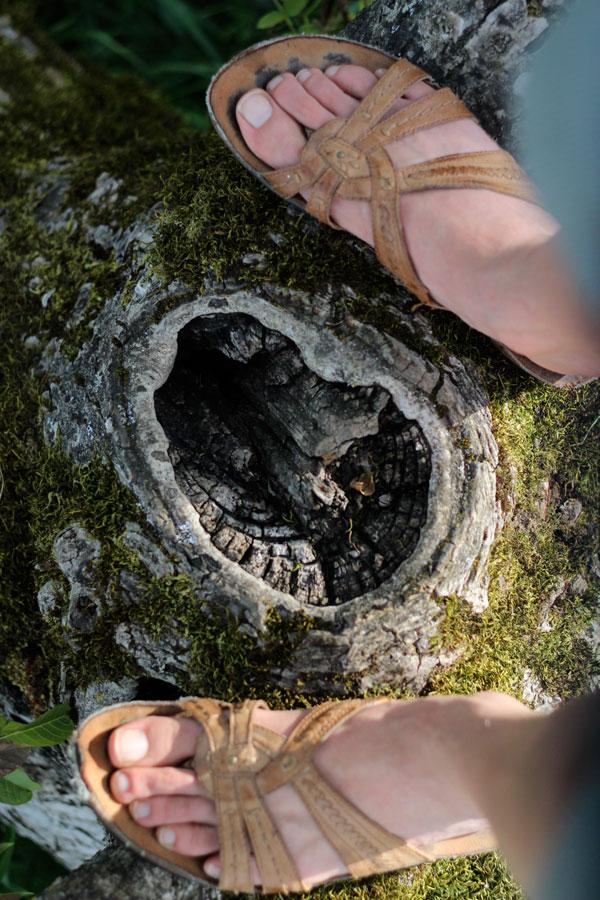 feet-tree