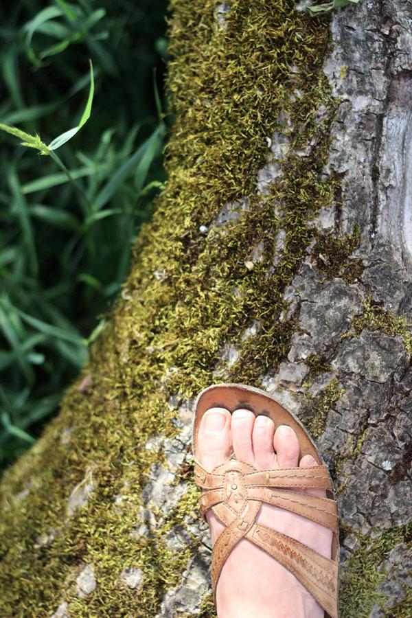 foot-tree